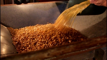 Corn hopper