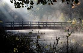 Steamy River